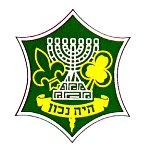 wosm-israel.jpg (8133 bytes)